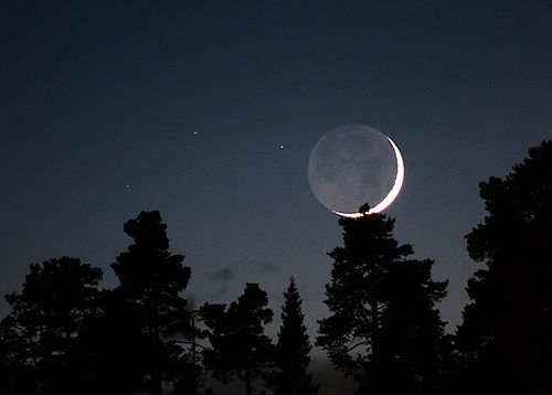 The Lunar Eclipse & OM Chanting